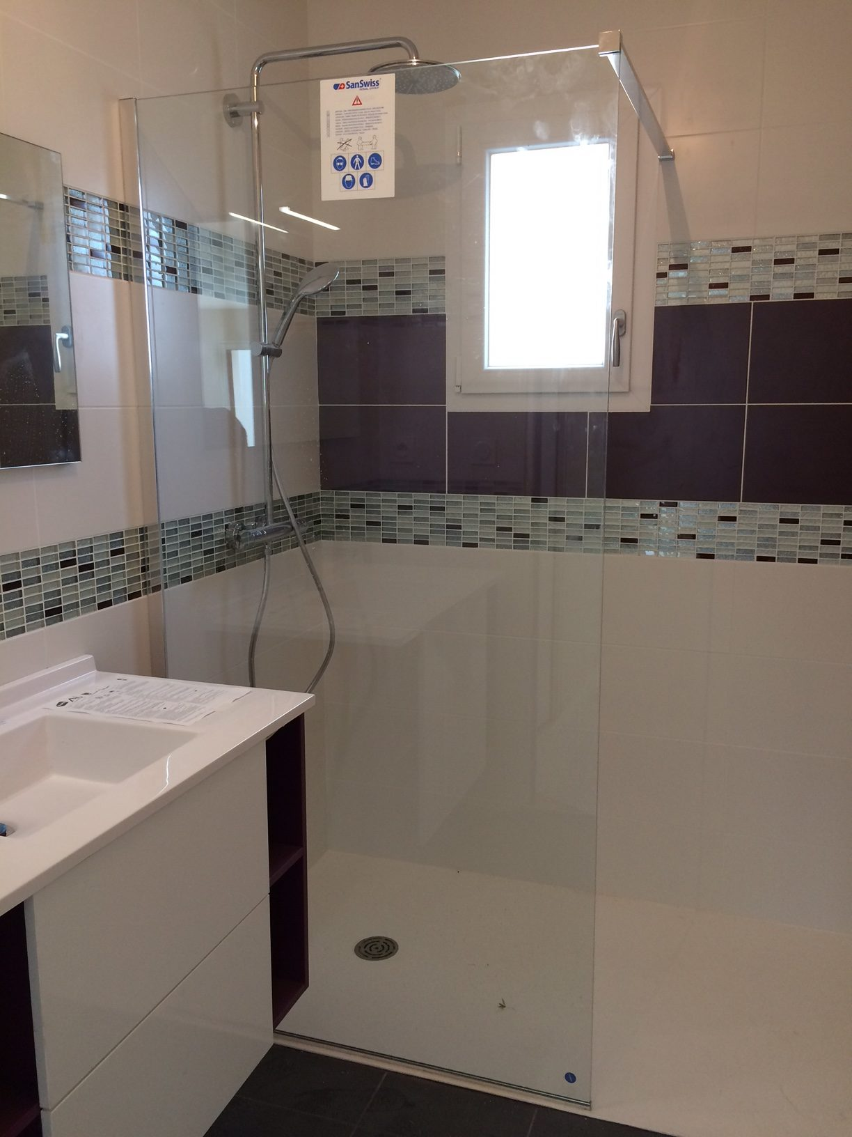 Salle de bain ( paroi et colonne de douche), Vitré (35)